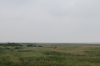 Dünenlandschaft in St. Peter-Ording